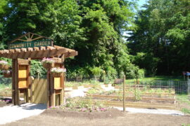 CommunityGarden2